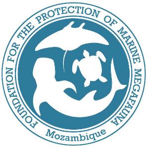 MMF-logo-bar