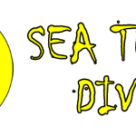 logo-sea-turtle-divers