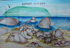 Elephant Head Rock Drawing